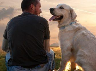 Kutya-gazda kapcsolat kérdőív