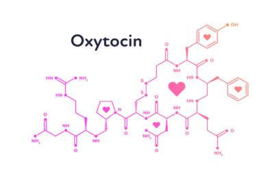 Megjelent új cikkünk: empátia, ragadós ásítás, oxytocin és kutyák kapcsolata